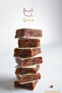 fruit nut bars