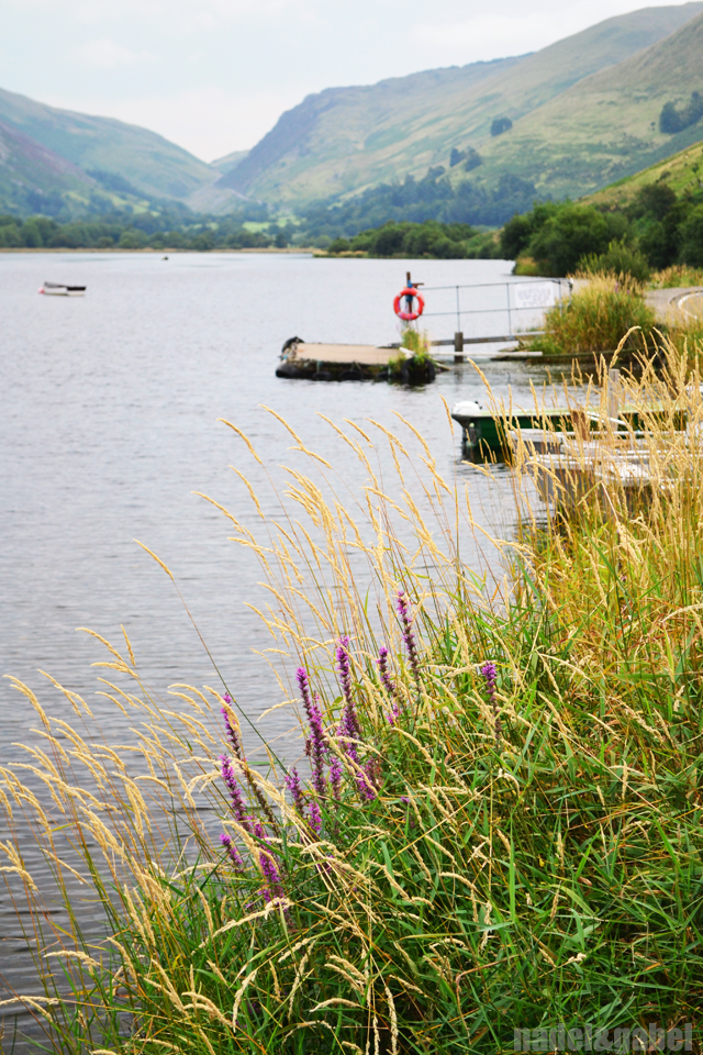 Tal-y-Lyn lake