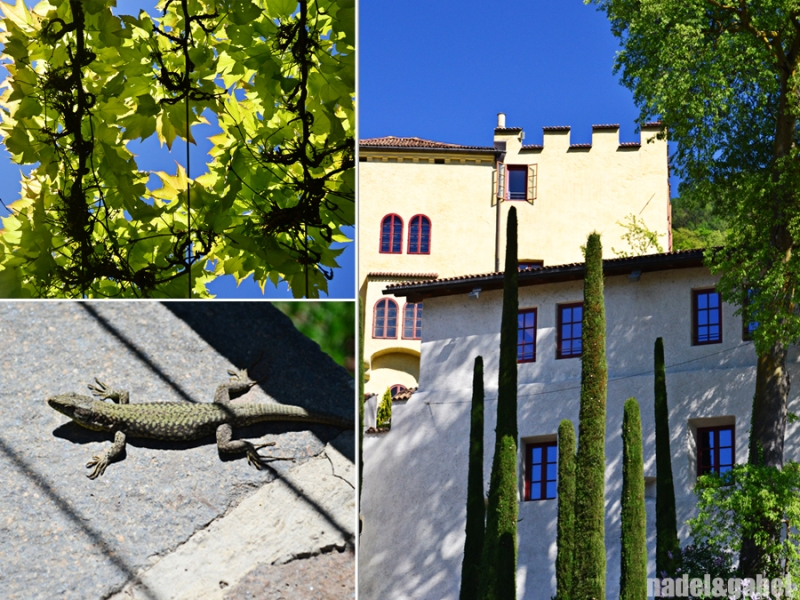 Trauttmansdorff gardens - Merano 2