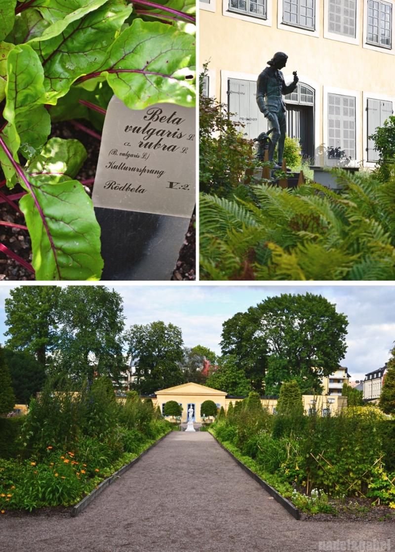 Linné Garden