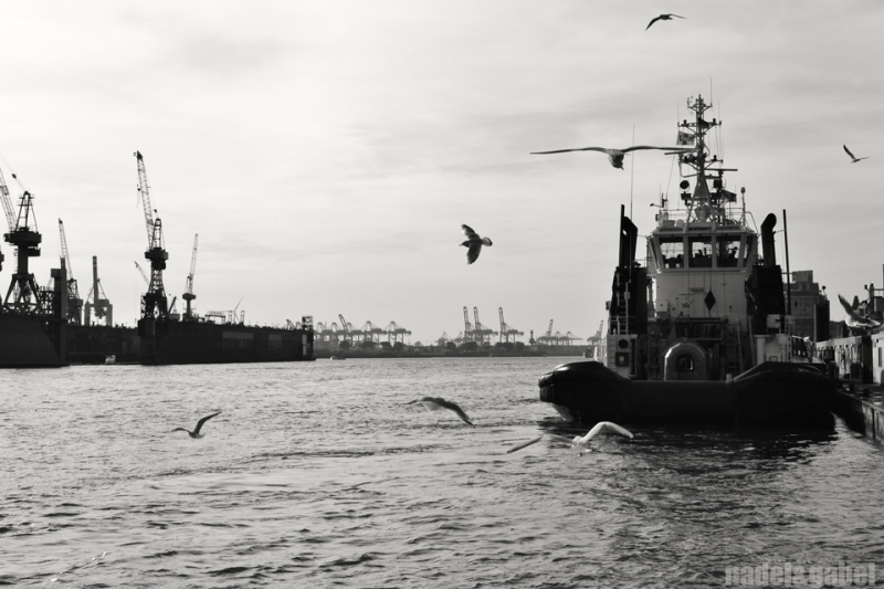 Hamburg Harbour 1