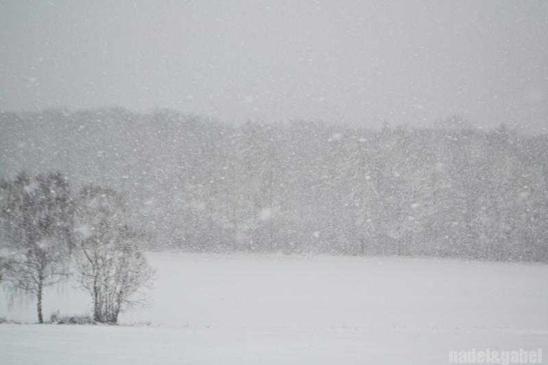 snowy winter landscape 1