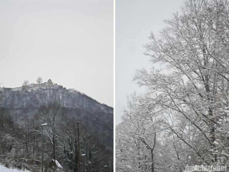 snowy winter landscape 3