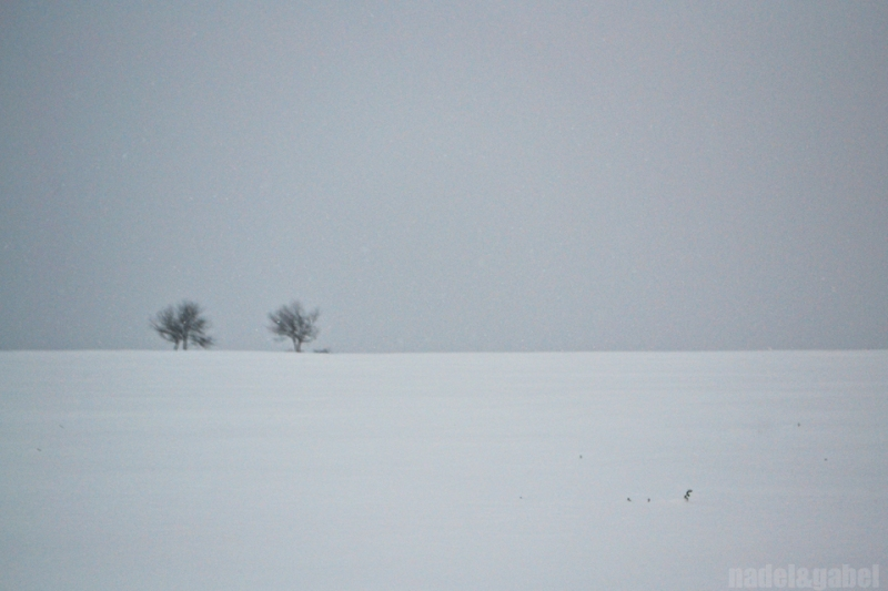 snowy winter landscape 6