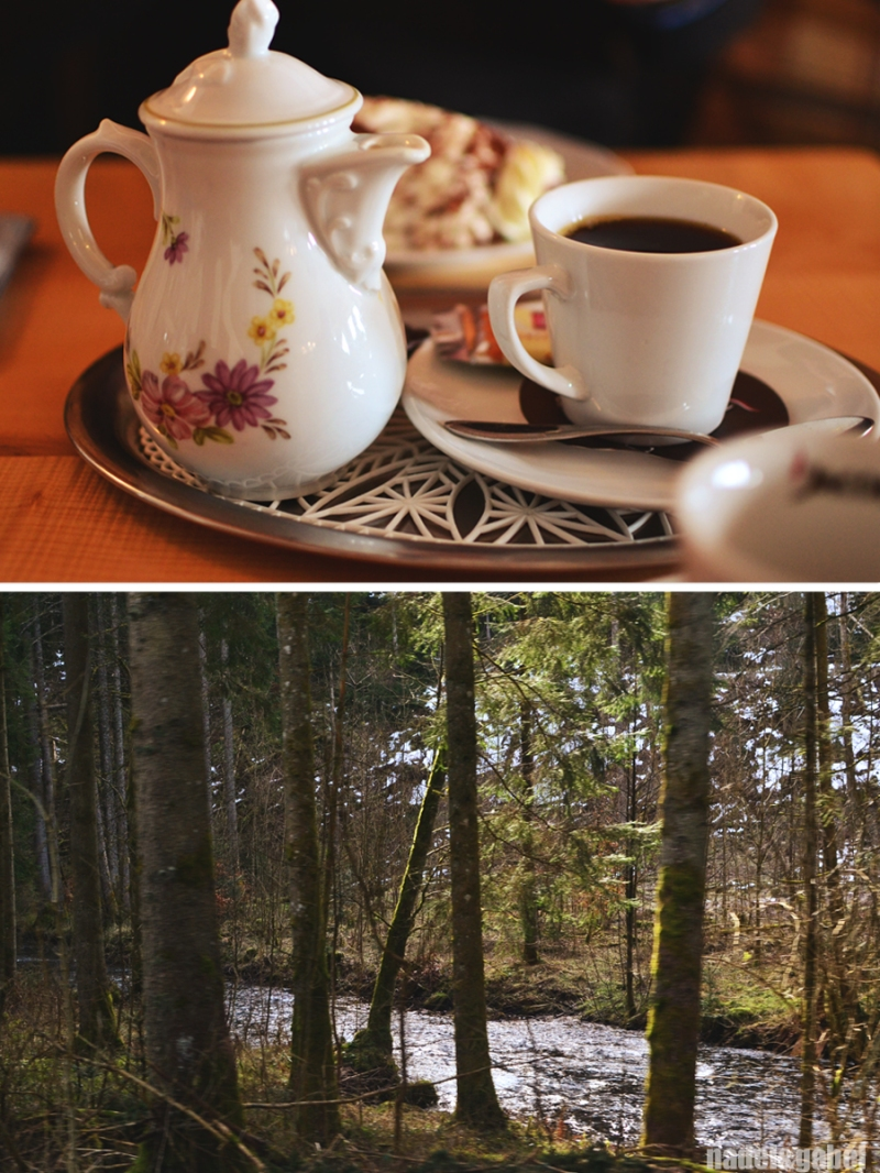Black Forest 5