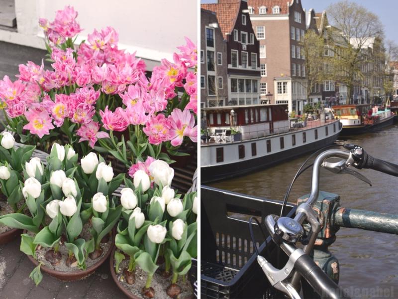 Amsterdam Grachten 4
