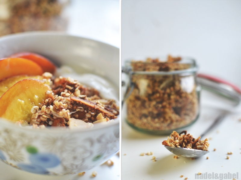 tropical granola with quinoa and coconut 6
