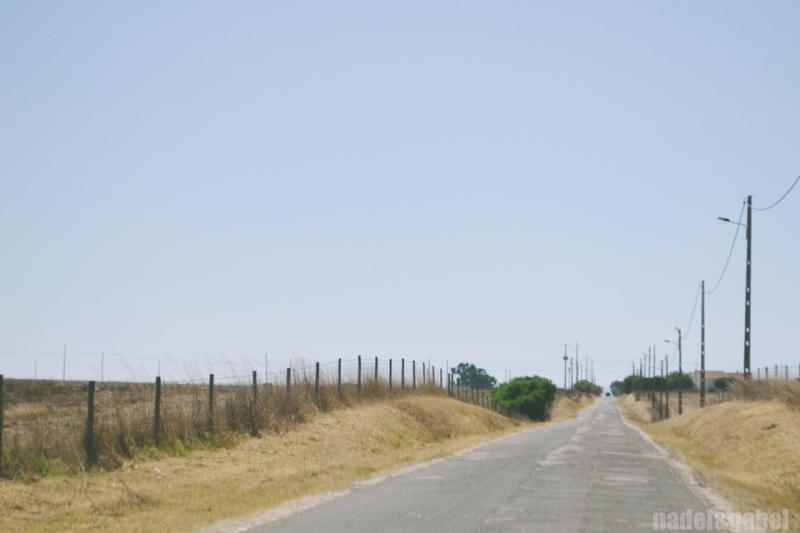 Alentejo landscape 2