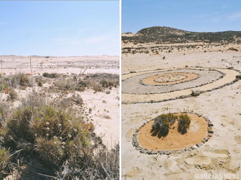 Dunes Almograve Portugal 2