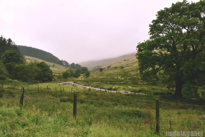 Taf valley Wales