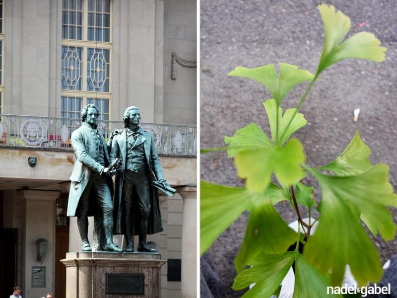 Goethe, Schiller & Gingko