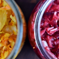 Into the Krauts - Golden and red Sauerkraut